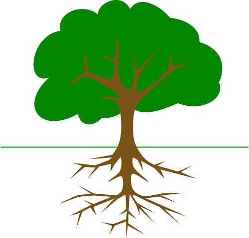 500x479 Top 88 Trees Clip Art