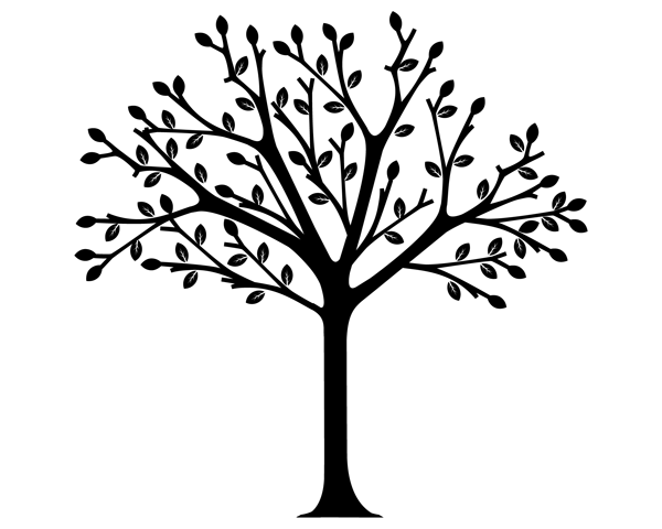 600x480 Tree Clipart Black And White