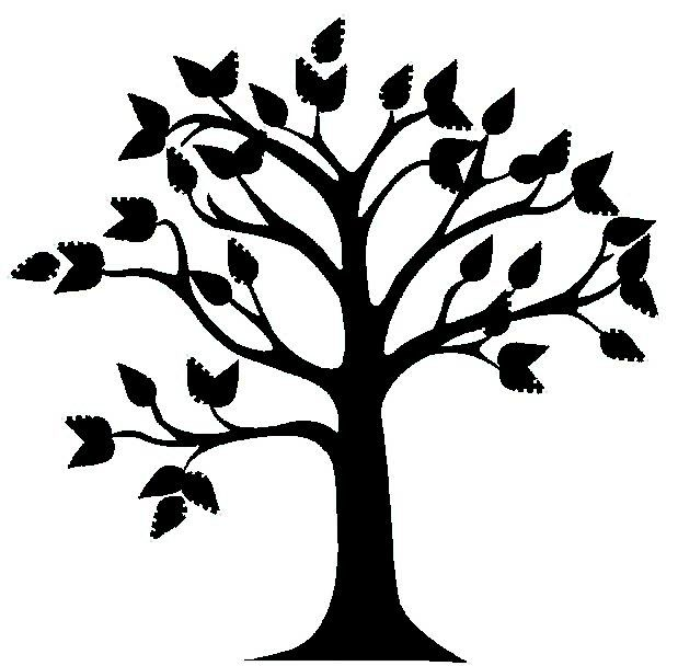 619x608 Tree Clip Art Background Free Clipart Images
