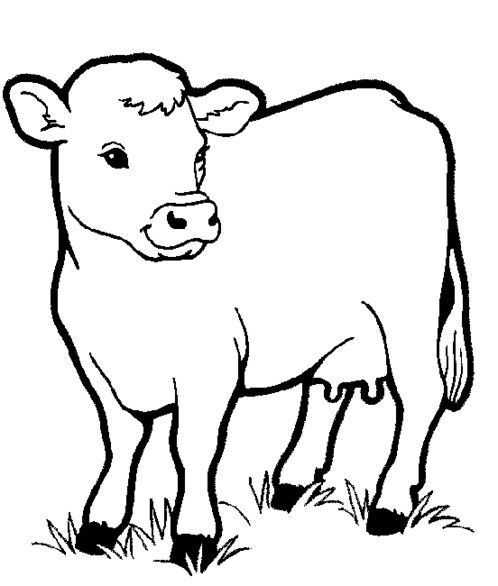 498x586 Farm Animals Clipart Line Drawing