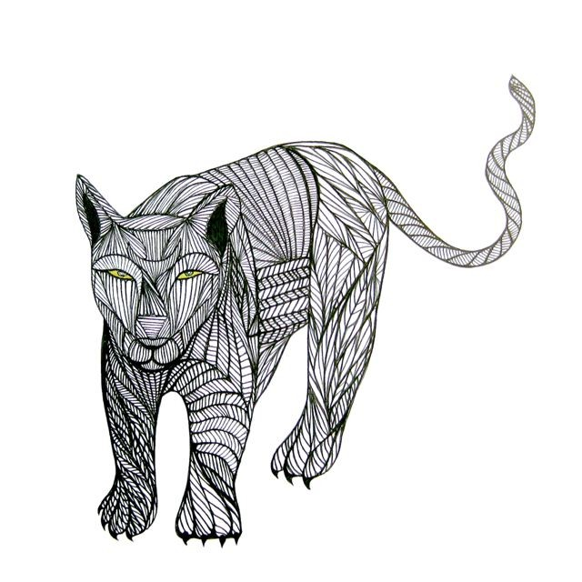 640x640 Puma Line Drawing Art By Thailan When Totems, Pumas And Drawings