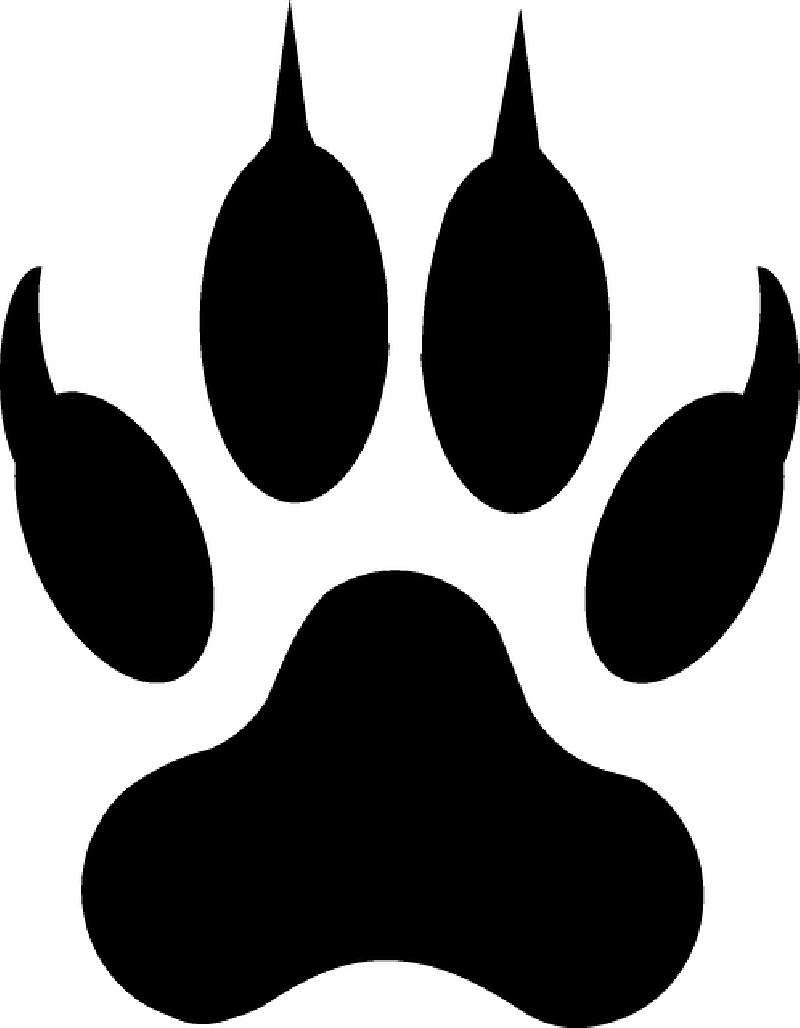 800x1028 Wolf Fangs Clip Art