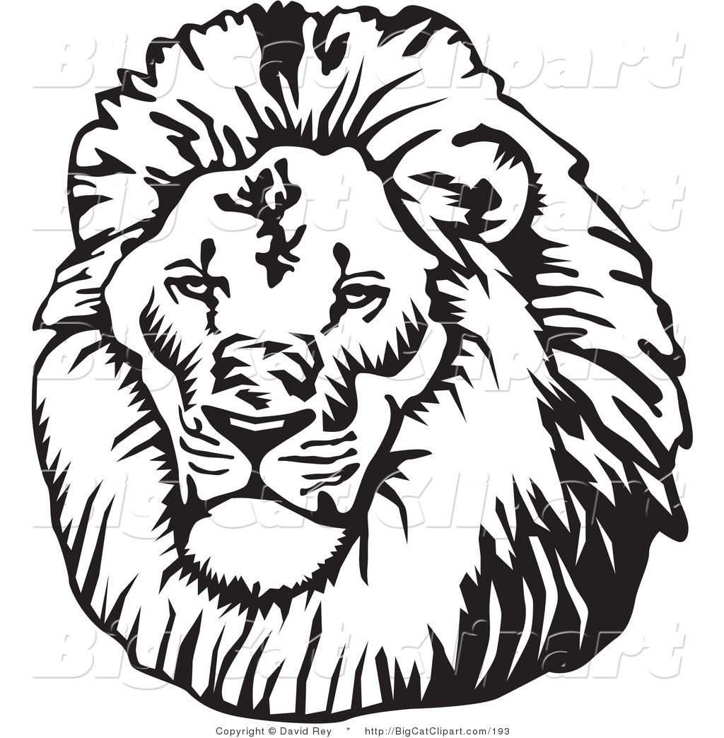 1024x1044 Mane Clipart Lion Clipart 23739 Male Lion Head Looking Left Lion