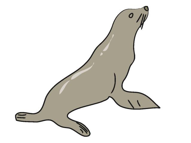 640x480 Sea Lion Clip Art Free Clipart Panda