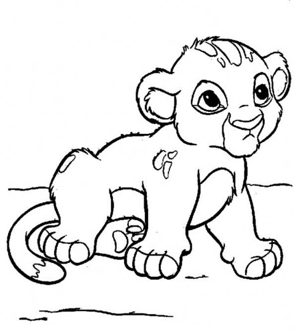lion coloring pages realistic baby | Lion Coloring Pages | Free download best Lion Coloring ...