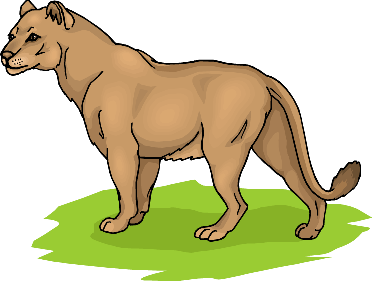 750x565 Lion And Lioness Clipart