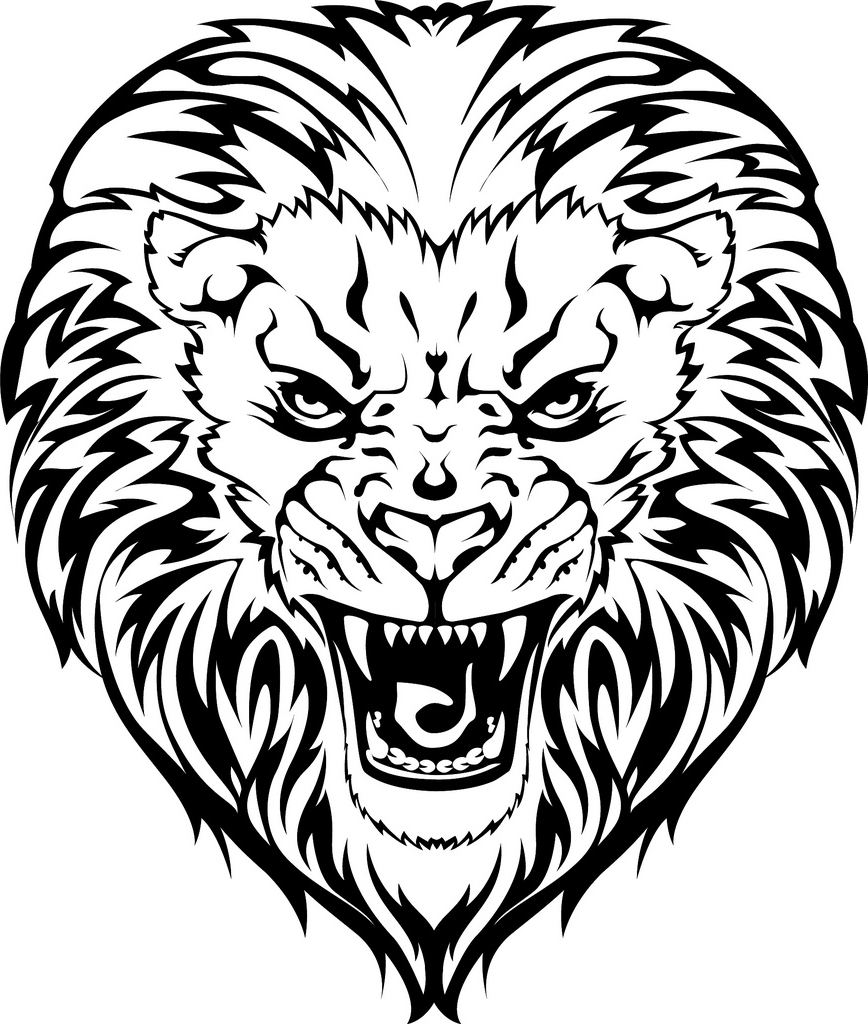 868x1024 Face Of A Lion Drawing Lion Face Stock Vector Illustration