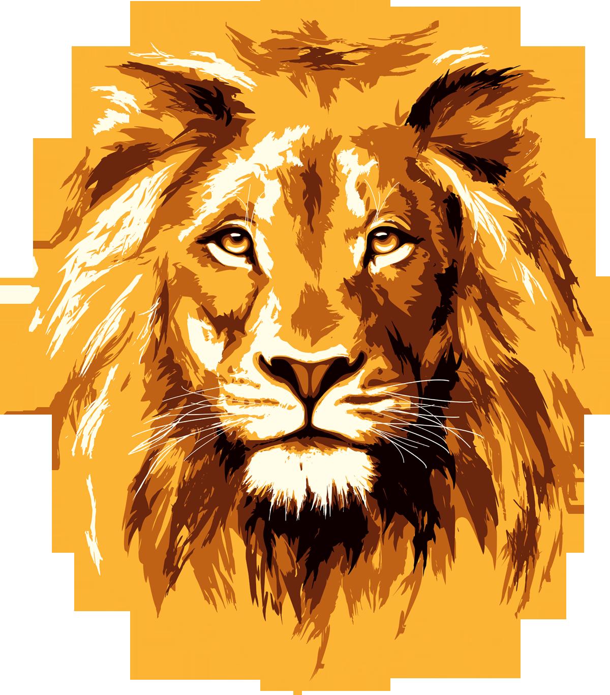 1200x1368 Lion Face Png Images