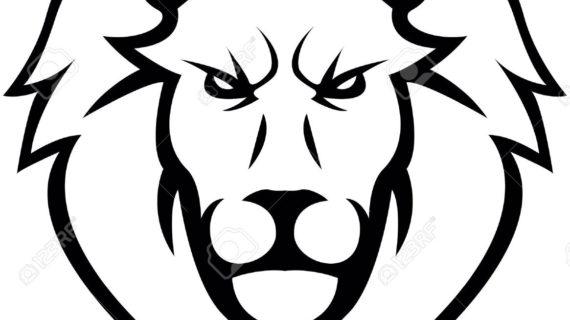 570x320 Drawing A Lion Head Lion Head Clipart Lion Head Clip Art Images