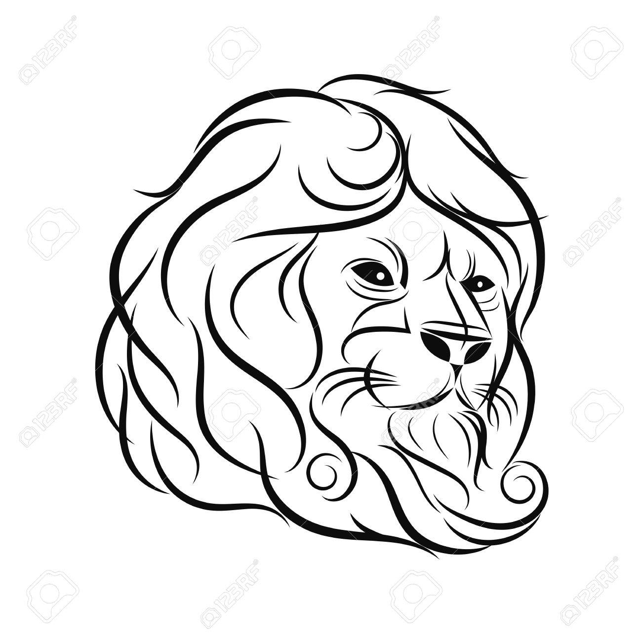 1300x1300 Hand Draw Lion Head Outline Design On Gray Background Royalty Free