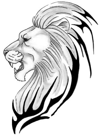 347x471 8 Best Lion Tattoo Images Drawings, Searching