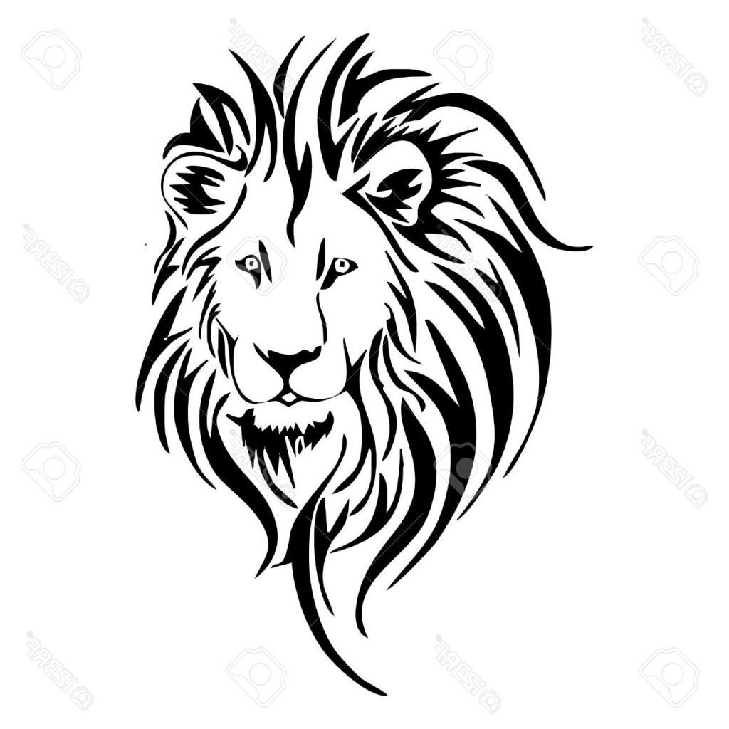 1024x1024 Simple Lion Head Drawing 1000 Images About Senior T Shirt Ideas