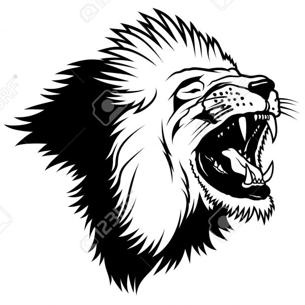 618x618 Adult Lion Drawing Outline Lion Outline Drawing. Lion Drawing