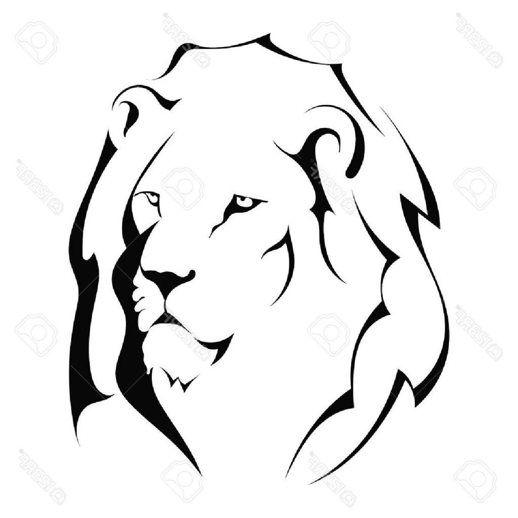 1024x1024 Best Lion Head On White Background Stock Vector File Free