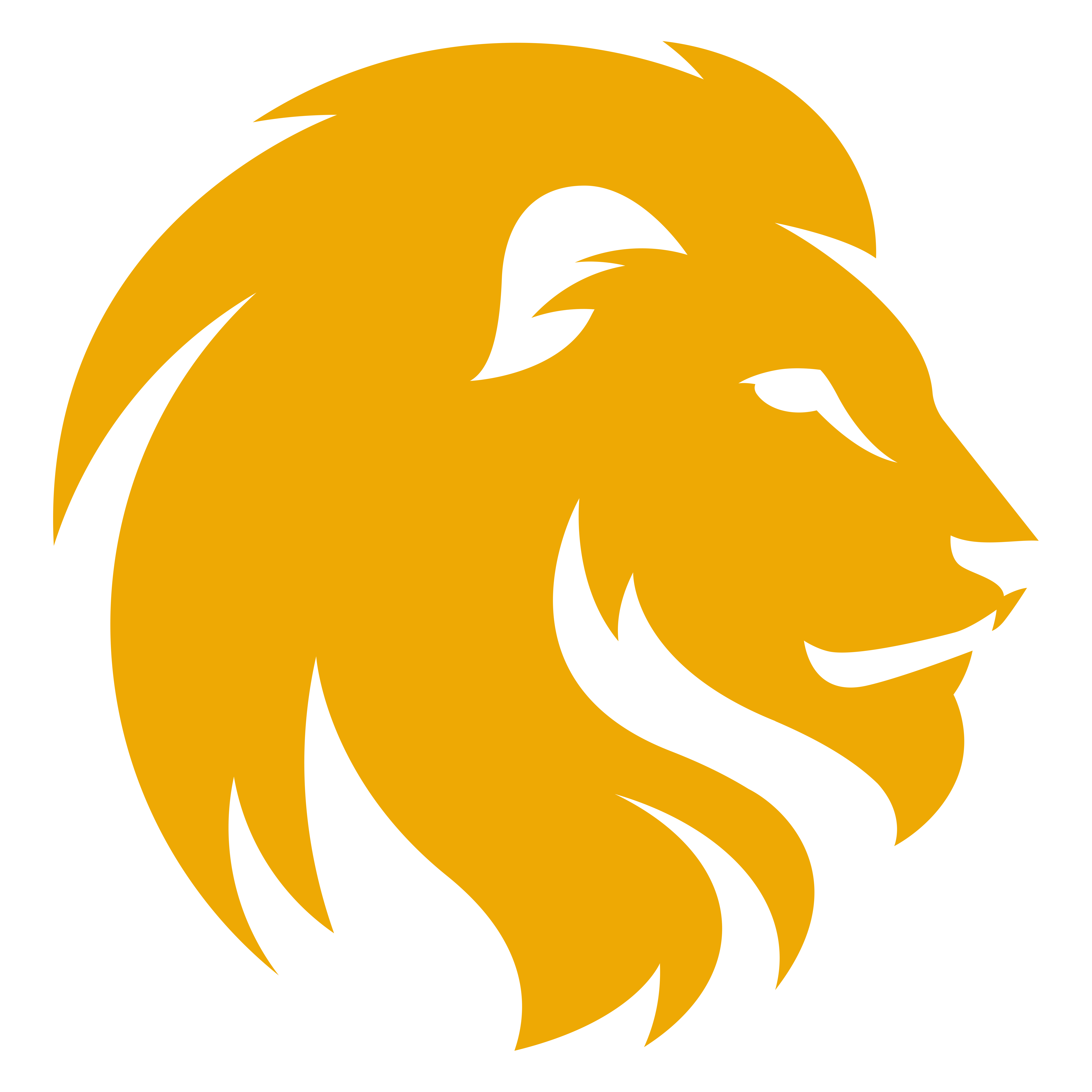 5346x5346 Lion Clipart Transparent Background