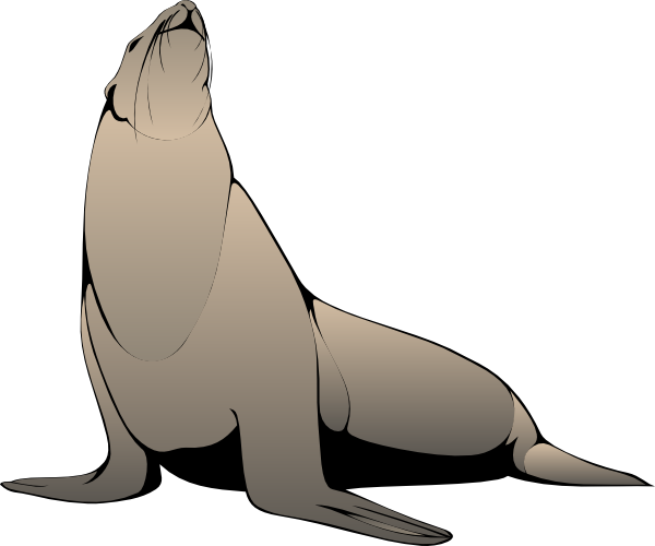 600x500 Free To Use Amp Public Domain Sea Lion Clip Art