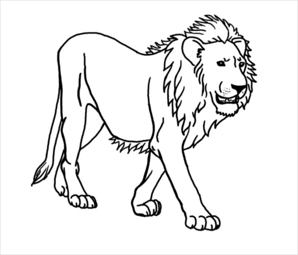 585x500 Lion Drawing Template Free Pdf Documents Download Free