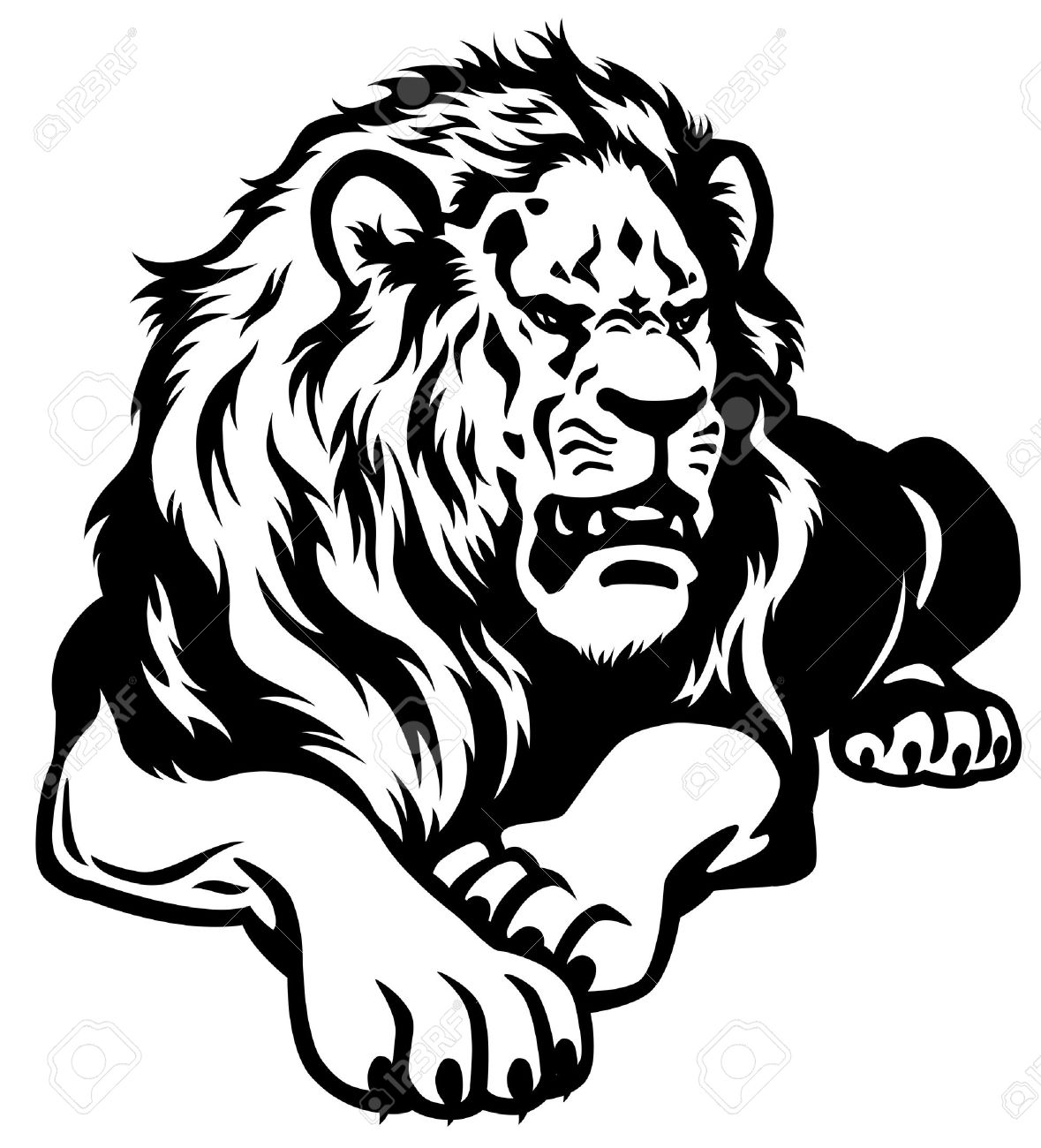1179x1300 White Lion Clipart African Lion