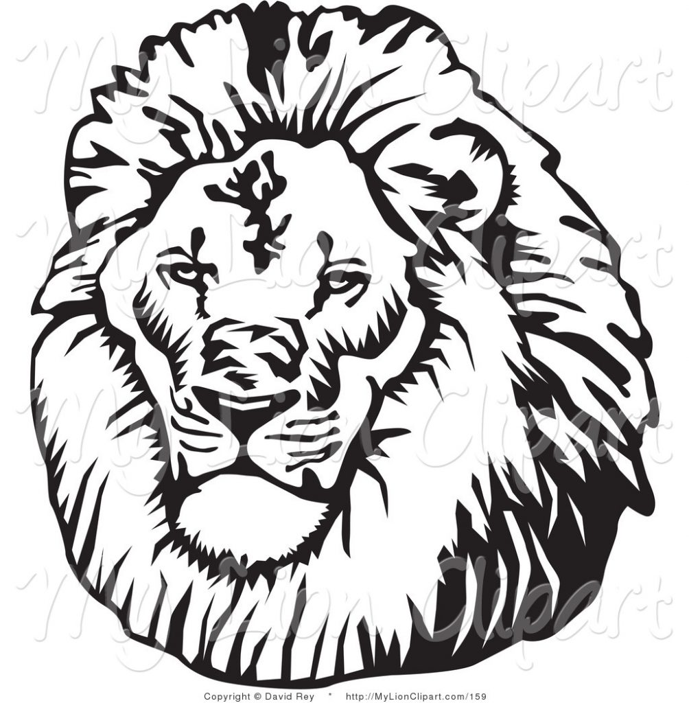 1004x1024 White Lion Clipart Graphics