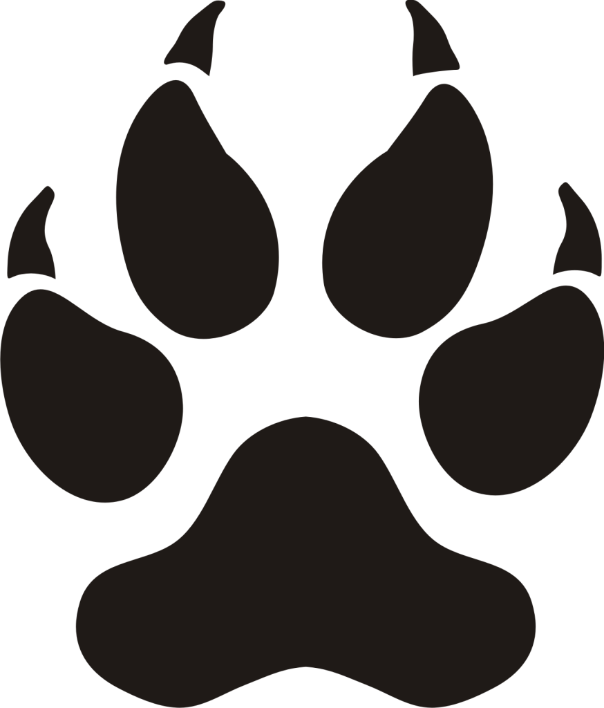 874x1024 Panther Clipart Tiger Claw