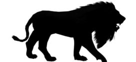 272x125 Lions Silhouette Cliparts Free Download Clip Art Free Clip Art