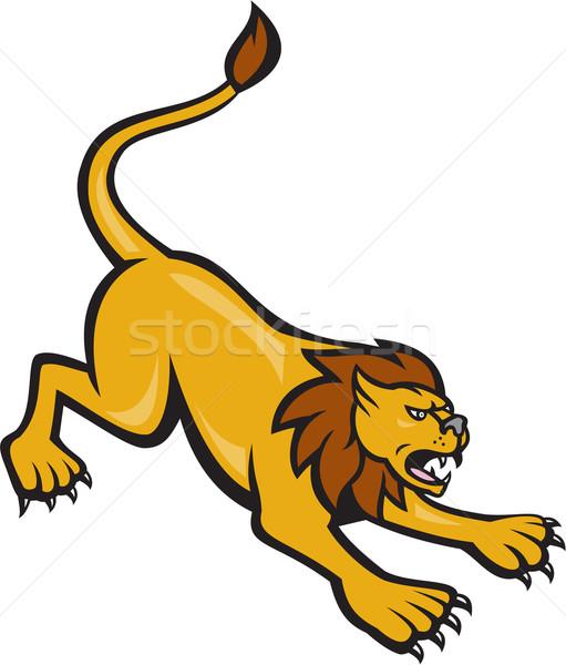 511x600 Lion Head Stock Vectors, Illustrations And Cliparts Stockfresh