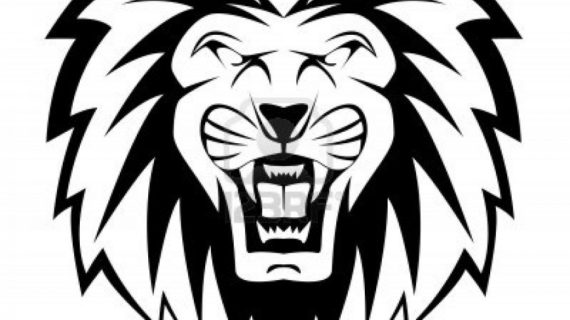 Lion Roaring Drawing Free Download Best Lion Roaring Drawing On