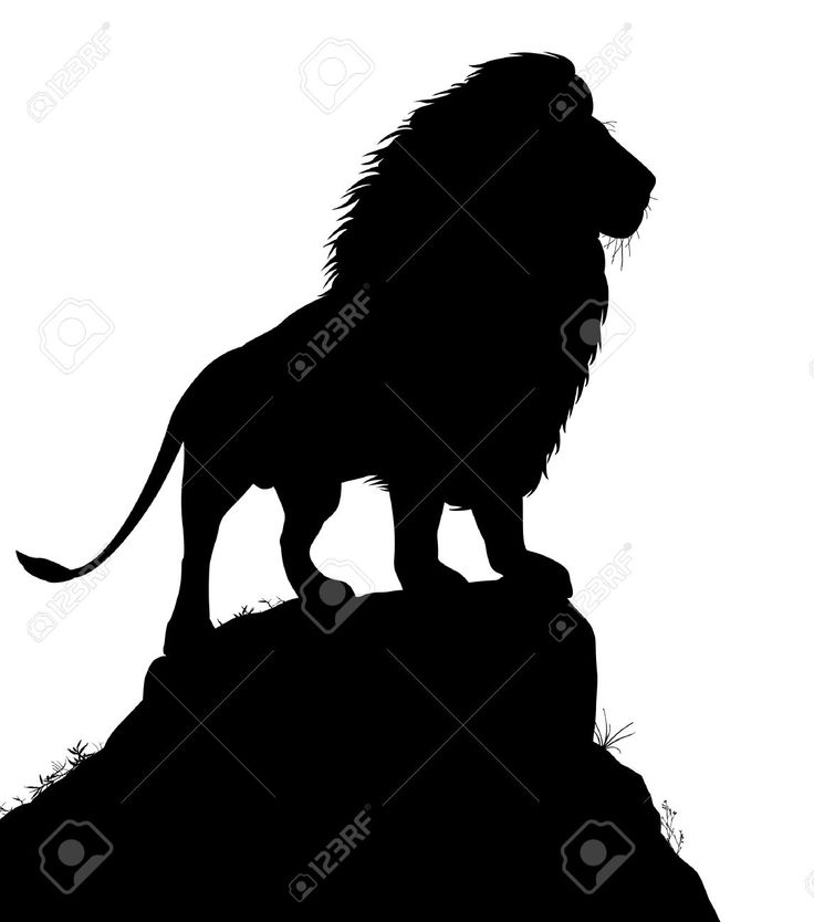 736x834 Best Lion Silhouette Ideas Lion Stencil, Lion