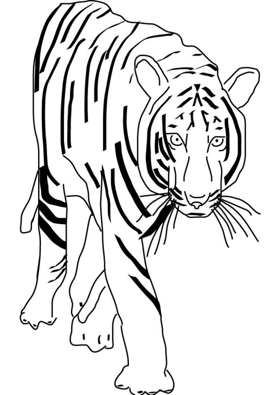 Lisa Frank Coloring Pages Free Download On Clipartmag