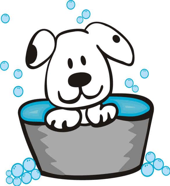 584x640 Pet Bath Clipart