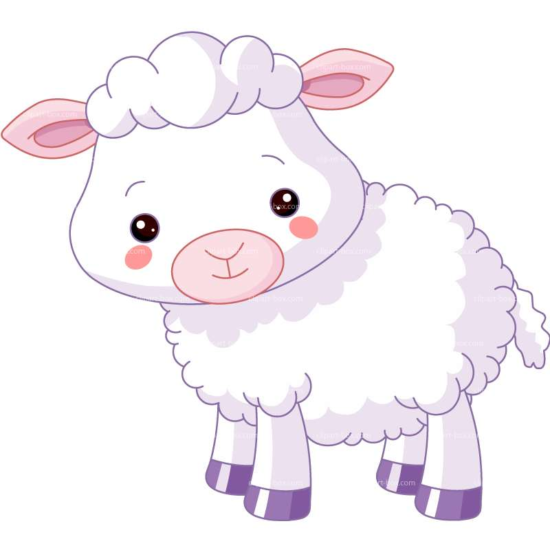 800x800 Cute Lamb Clipart
