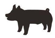 179x123 Livestock Show Pig Clip Art Thewealthbuilding