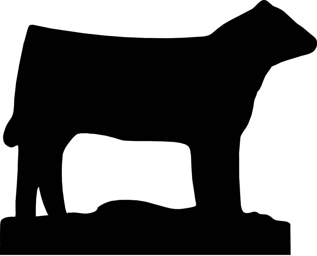 1020x825 Steer Clip Art Many Interesting Cliparts