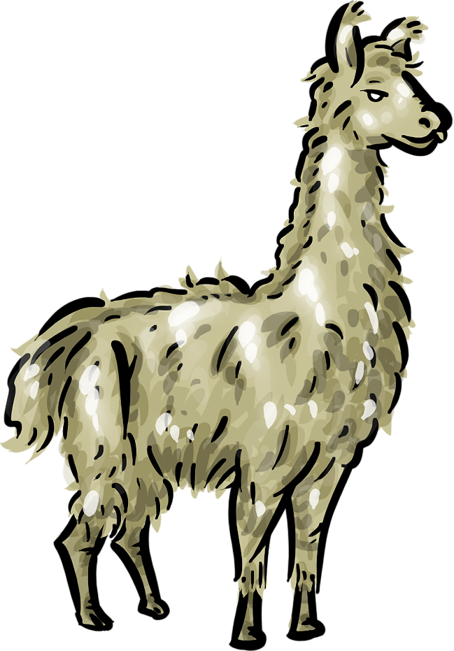 649x931 Llama Clipart Cartoon Pencil And In Color Llama 2
