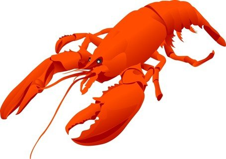 455x321 Lobster Clip Art, Vector Lobster