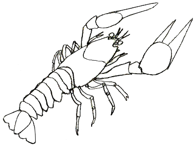 400x301 Lobster Outline Clipart Cliparts And Others Art Inspiration 2