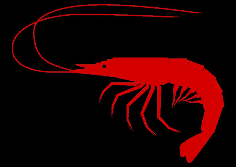800x566 Lobster Clipart Shrimp