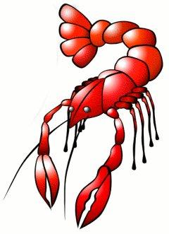 240x331 Clip Art Lobster Clipart 3