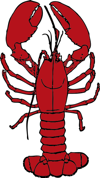 337x600 Lobster Clip Art Many Interesting Cliparts
