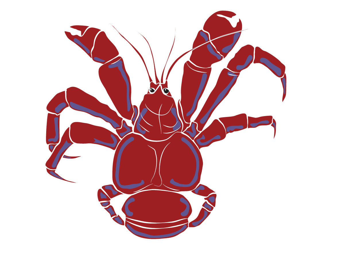 1181x886 Sea Life Clipart, Instant Download, Mud Crab, Coconut Crab Digital