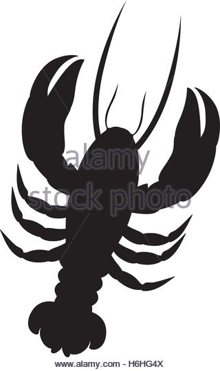 320x540 Mud Lobster Stock Photos Amp Mud Lobster Stock Images