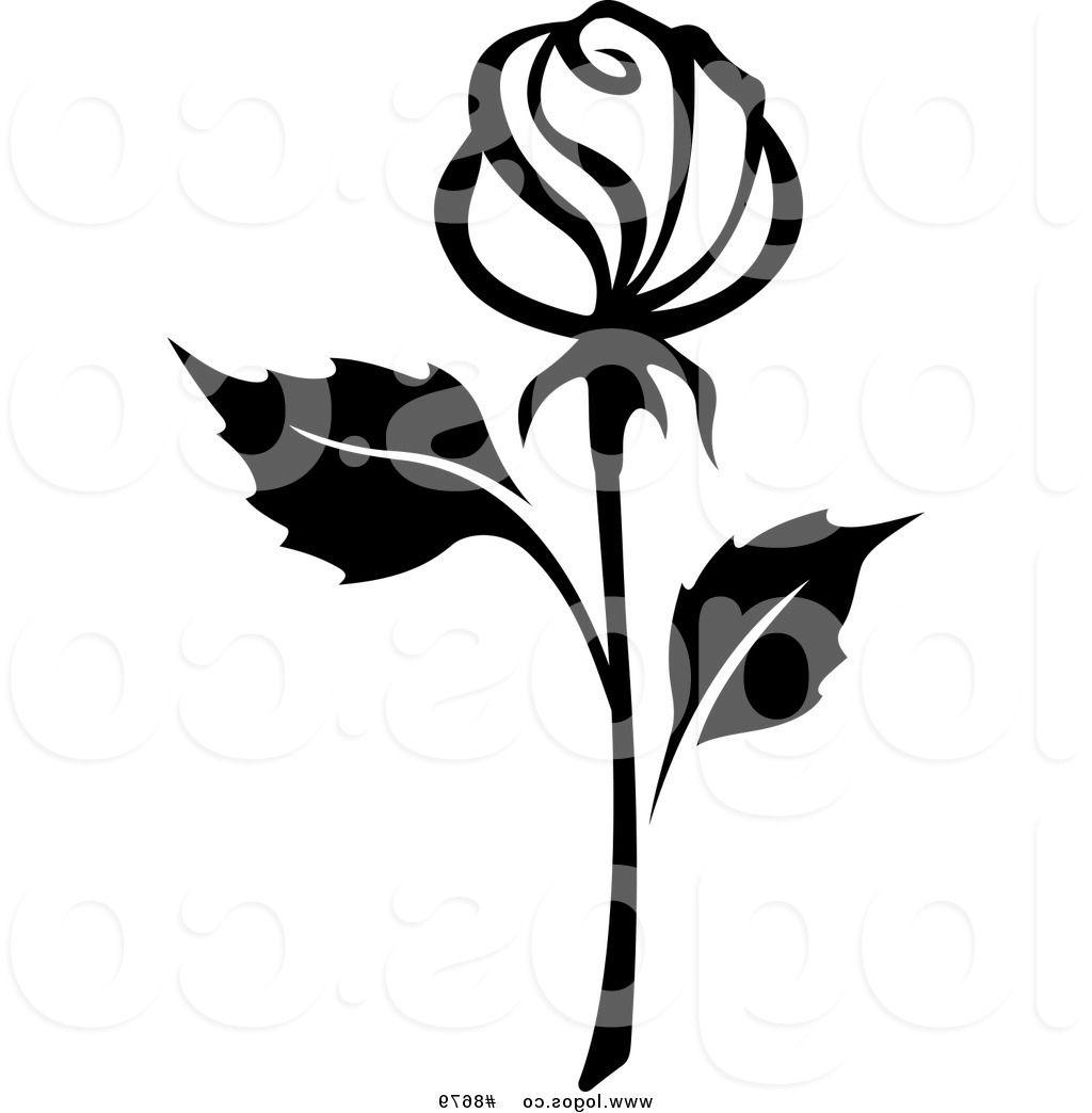 1024x1044 Best Free Ee Clip Art Vector Black And White Rose With Long Stem