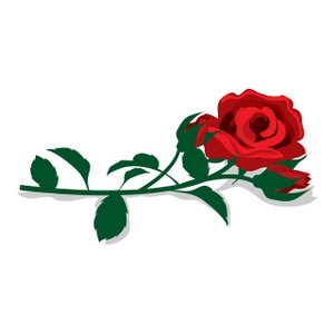 300x300 Red Rose Clipart Image