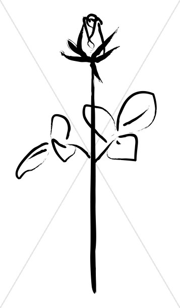 357x612 Black And White Sketched Rose Church Rose Clipart