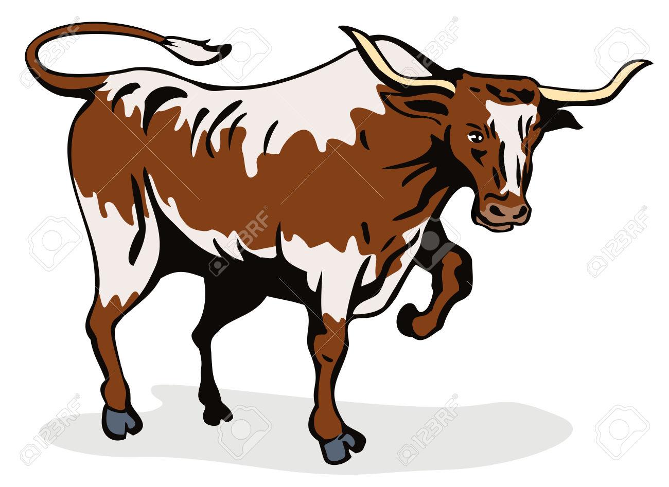 1300x947 Longhorn Cattle Clipart Thin