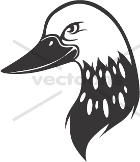 275x320 Common Loon Head In Black