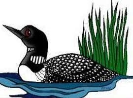 270x199 Free Common Loon Clipart