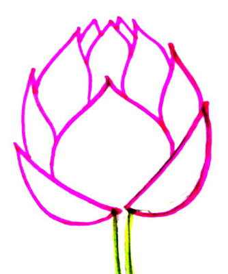 334x400 How To Draw A Lotus