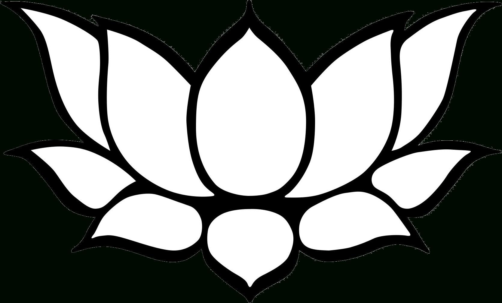1670x1010 Pencil Line Picture Lotus Flower Lotus Flower Drawing Best