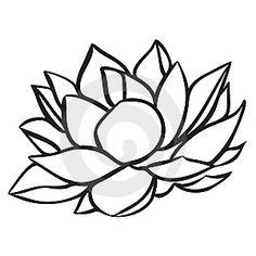 236x236 Lotus (1670x1010) Jcxdeejce